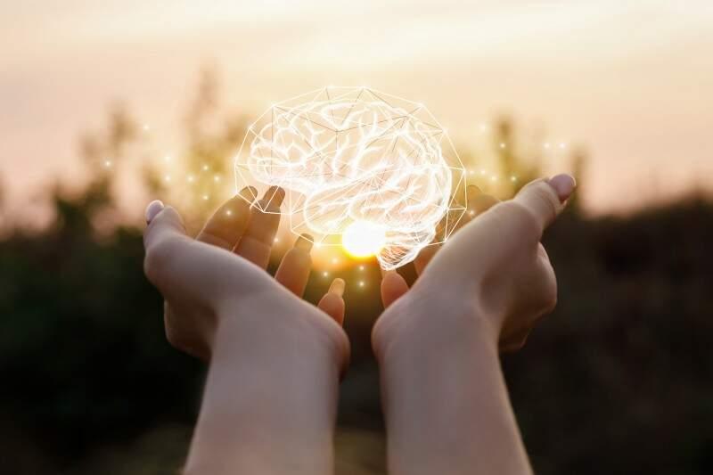 Behaviorismo Guia Completo Sobre A Psicologia