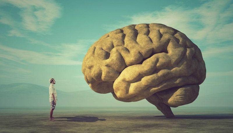 Avaliação neuropsicológica - o que é e como escolher um psicólogo para fazê-la