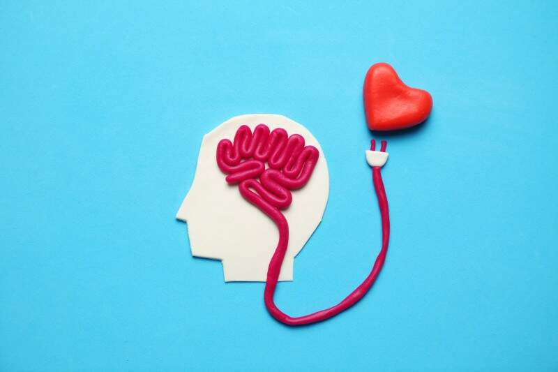 Physical health: how is it impacted by mental disorders and what are the main symptoms?